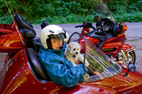 2009_2321.sue_pen_sidecar.jpg