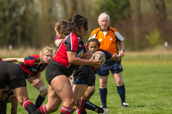 150405_Rugby-5950