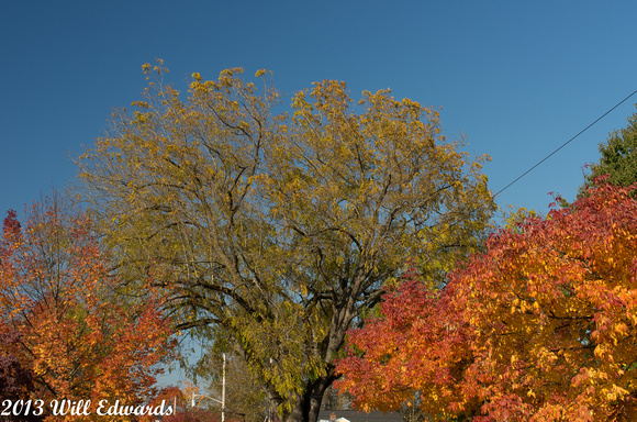 20131014_7404_7th-Ave-Puyallup