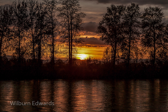 20120423__Willamete River Sunset